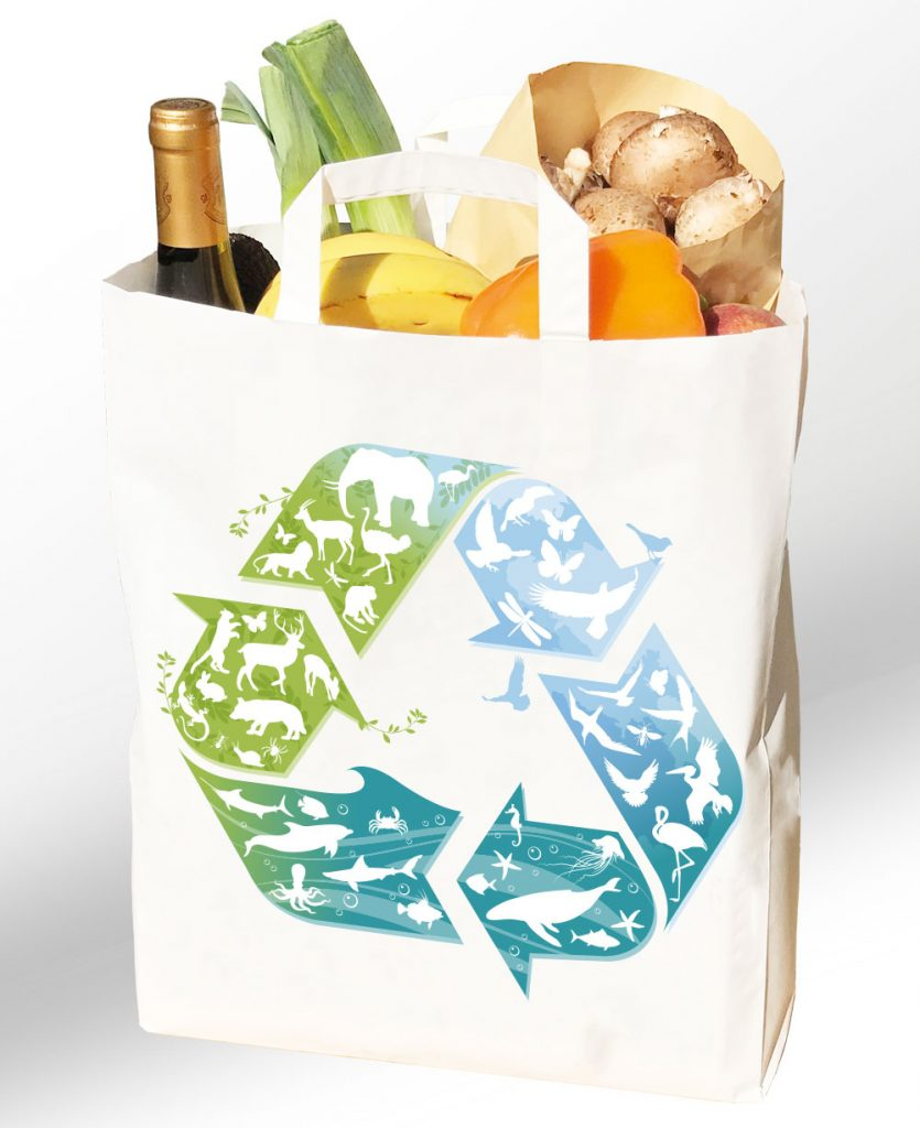 reusable paper bag groceries