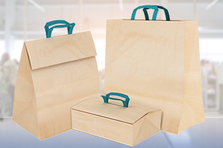 food to go paper bags